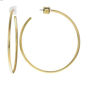 Michael Kors hoop earrings